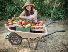 Roberta Mell with wheelbarrow full of fresh vegetables.