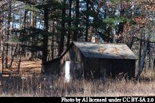 Aldo's shack