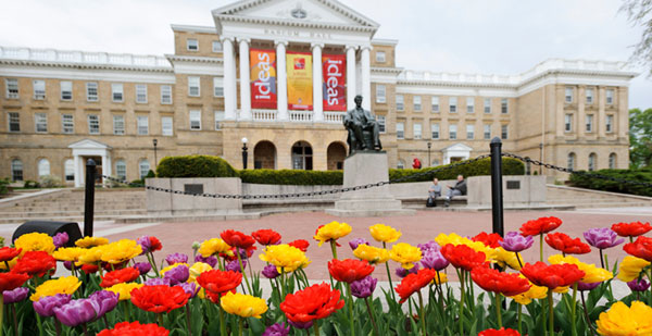 Tulips blooming outside of Bascom Hall