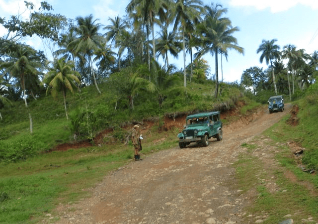 1955 Jeeps drive through El Yunque