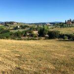 Italy farmland