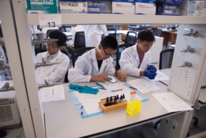 ACE students working in a lab