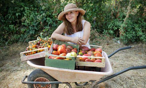 A fruit seller shows off her apples in a wheelbarrow.