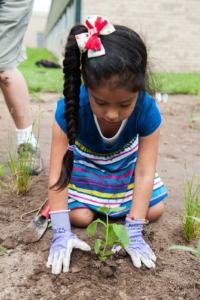 Through the Latino Earth Partnership, children plant a garden at Nuestro Mundo Community School (also pictured above).