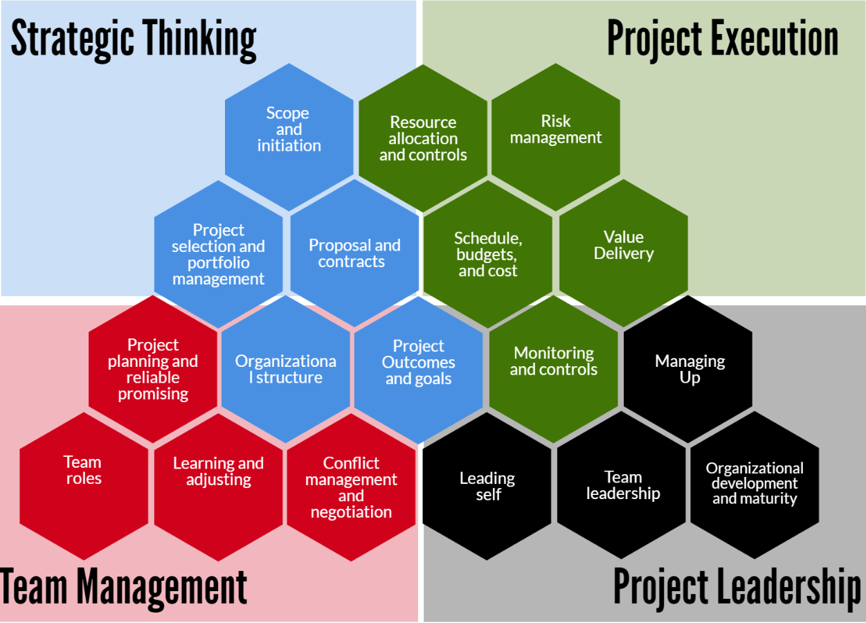 Strategic Thinking, Project execution, team amanagement and project leadership infographic